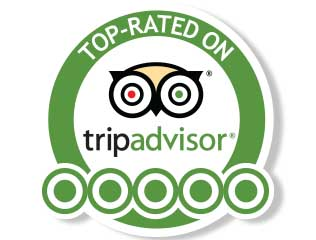 Trip Advisor Rated Activity